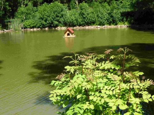 Entenhaus auf unserem kleinen See